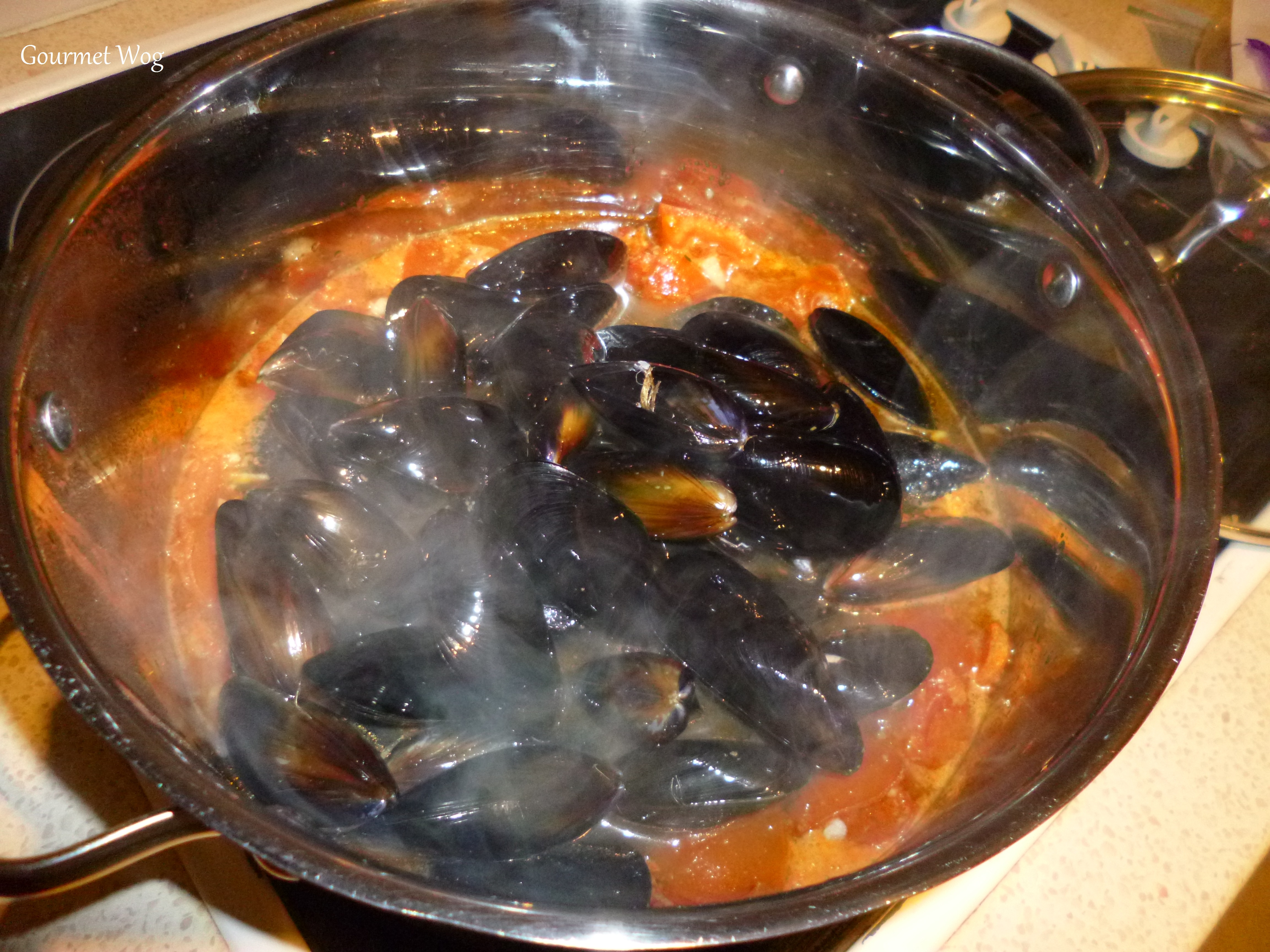... tomatoes in white wine sauce mussels with tomatoes wine and anise
