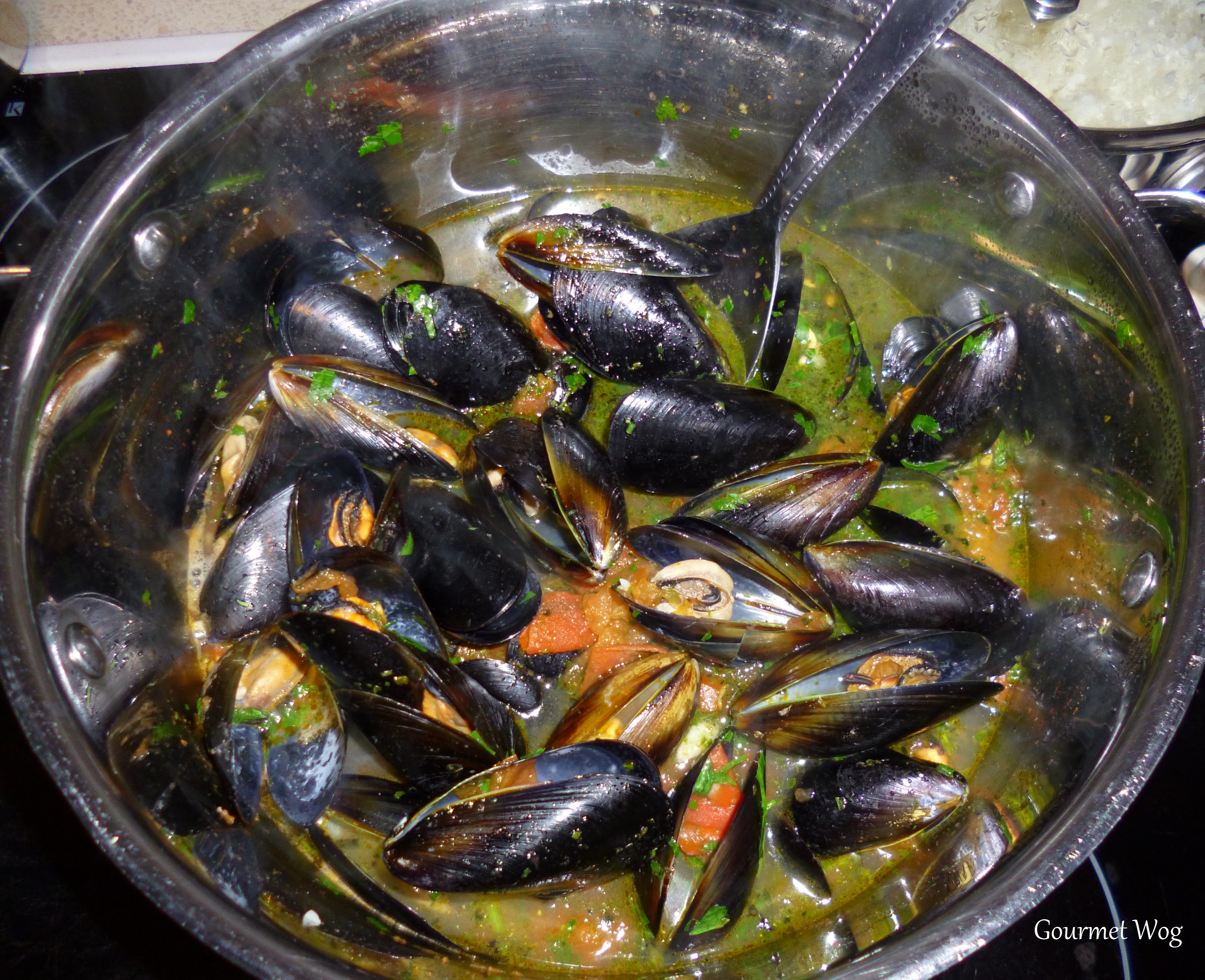 Mussels in White Wine, Tomato, Garlic and butter sauce. Delicous ...