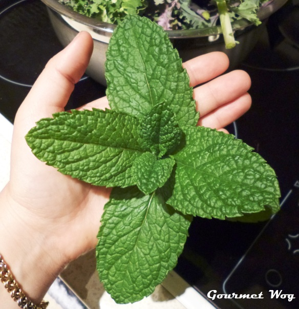 huge mint leaves
